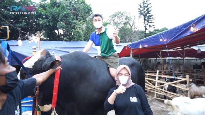 Raffi Ahmad naiki sapi kurban seberat 1,3 ton untuk perayaan Idul Adha yang telah dibelinya, Senin (19/7/2021).