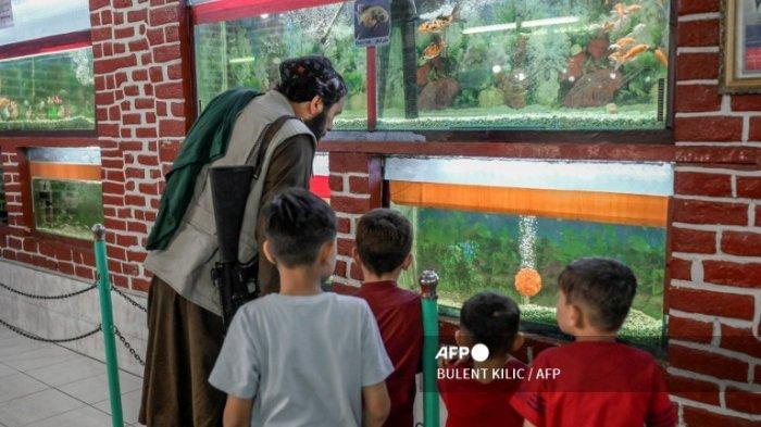 Seorang pejuang Taliban bersama dengan anak-anak melihat akuarium di Kebun Binatang Kabul pada Rabu (17/9/2021).