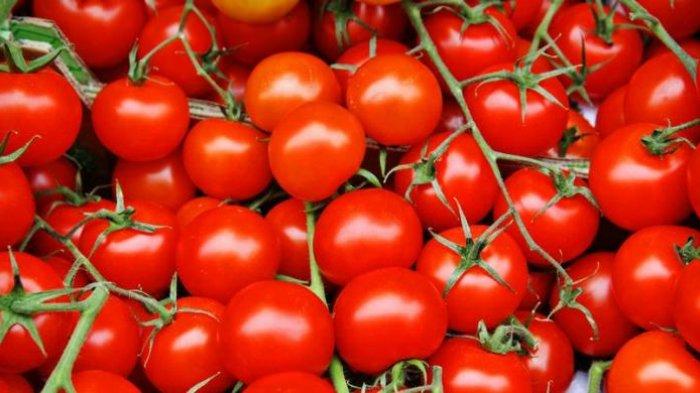 Tomat Manjur Untuk Menghilangkan Minyak Di Wajah Begini Cara Membuat Maskernya Tribun Wow