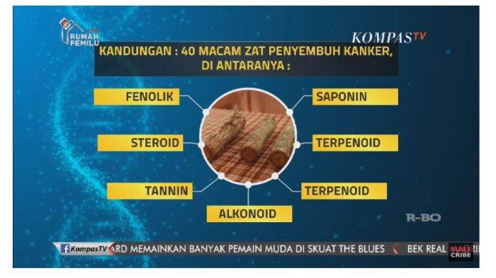 Kisah Nenek di Kalimantan Sembuh dari Kanker Payudara ...