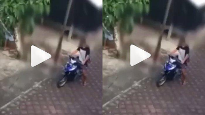 Pelaku Pemukulan pada Anjing yang Sempat Viral di Bali Ditangkap, Polisi Ungkap Motifnya