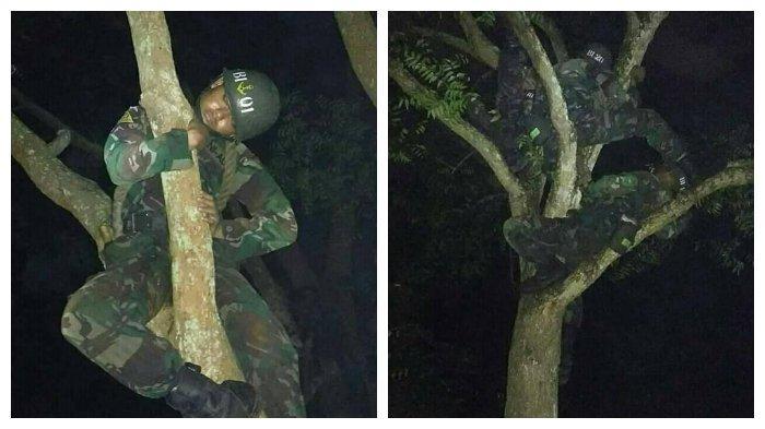 Viral foto-foto anggota TNI tidur pulas di atas pohon di sebuah hutan