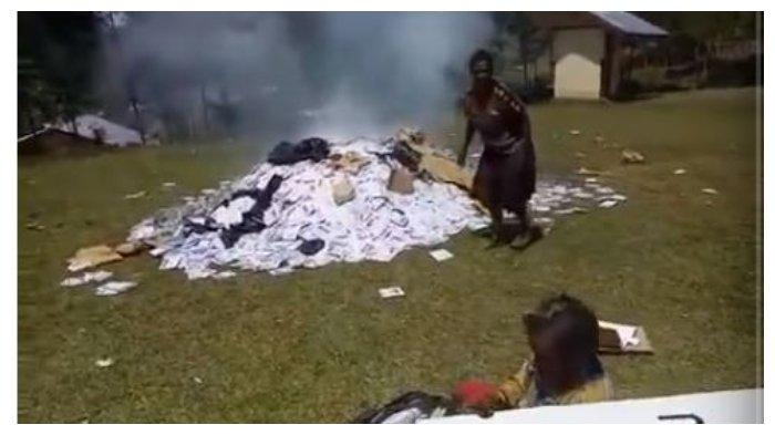 Viral Video Ribuan Surat Suara di Papua Dibakar di Tengah Lapang