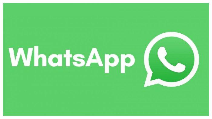 Segera 'Amankan' Data Whatsapp Android sebelum Tanggal 12 November