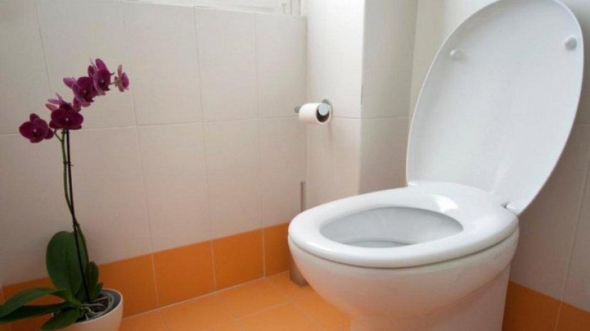 toilet_20170224_192145.jpg