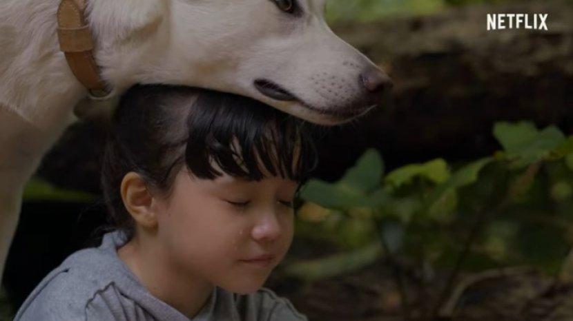Sinopsis Film June & Kopi yang Dibintangi Acha Saptriasa dan Ryan Delon,  Segera di Netflix - Tribun Wow