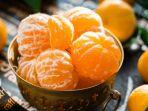 ilustrasi-buah-jeruk-segar.jpg