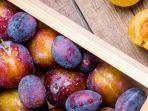 penampakan-buah-plum-ini-manfaat-kesehatan-dan-nilai-gizinya.jpg