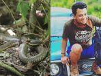 ular-king-kobra-panji-sang-petualang.jpg